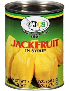 JACKFRUIT IN SYRUP 20oz JCS123